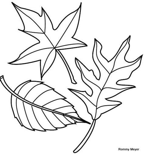imagenes para colorear hojas hojas para colorear