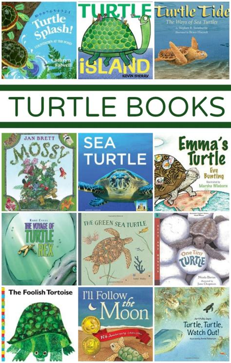 the tuttle and the search for atlas books turtle books fantastic learning