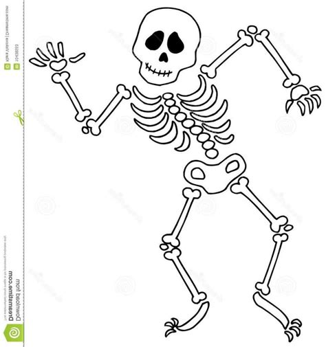 skeleton clipart skelton clipart hd skeleton clip photos clip