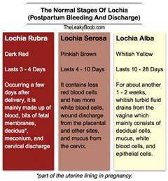 color of period blood postpartum bleeding the leaky b b