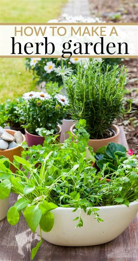 how to make your own indoor herb garden 453 best images about how to on pinterest