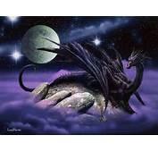 Black Dragon  Dragons Photo 30350131 Fanpop