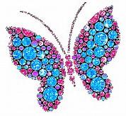 Gambar animasi kupu-kupu cantik