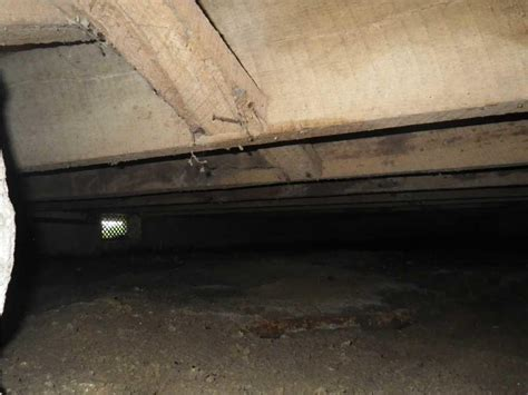 dirt floor basement solutions woods basement systems inc crawl space repair photo