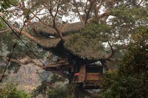 Weekly travel bucket list unusual restaurants tree hotels amp more