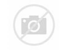 an essay on environment an essay on environment gxart  essay environment pollution gxart orgshort essay on environment pollution order essay slideshare net