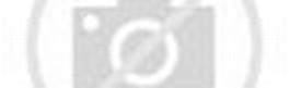 Kartu nama Untuk rental mobil dan travel ~ Lensa Pelancong