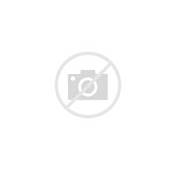White Jaguar XJ With Custom Black / Rims  Exotic Cars On The