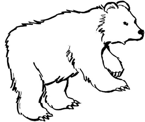 winter bear coloring pages bear coloring page baybear pinterest bears teddy
