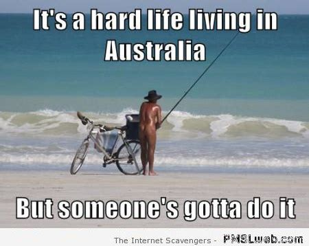 Funny Australia Day Memes - it s a hard life living in australia meme 450 215 358 on imgfave