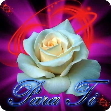 imagenes con frases bonitas y flores 5 im 225 genes de flores con frases de amor para descargar