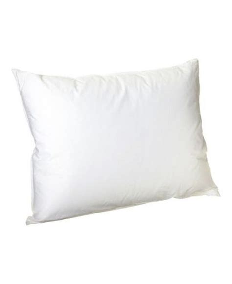 Continental Pillows by Continental 70cm X 80cm Anti Allergy Pillow