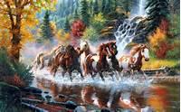 Horses Horse Of Beauty