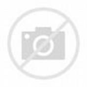 Model Gaun Pesta Muslim Brokat 2015 Terbaik