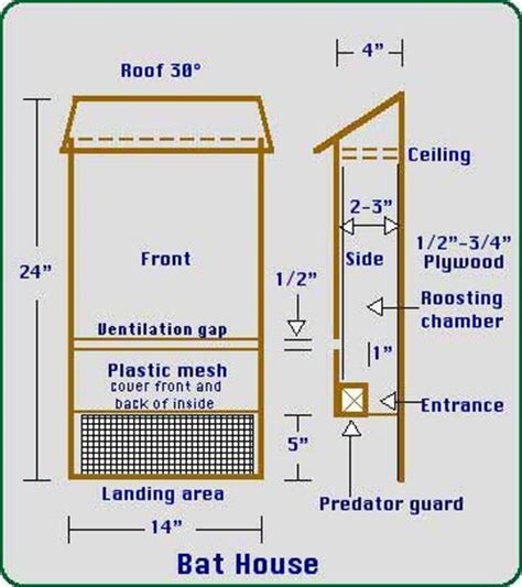 plans for building a bat house 10 best images about bat house on pinterest owl bird