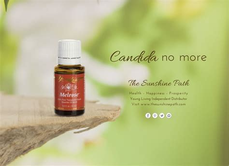 Essential Oils That Help With Candida Detox by The 25 Best Candida Fungus Ideas On Candida
