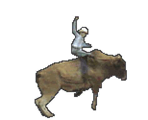 membuat gambar gif dari video rahmian4 gambar bergerak dari jenis hewan sapi