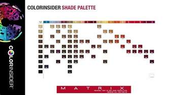socolor color chart colorinsider education the colorinsider shade