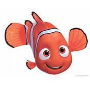 Nemo Photo