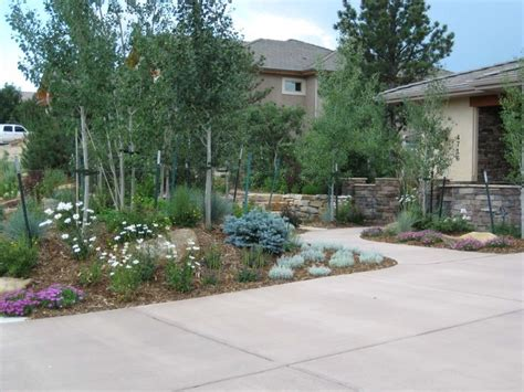landscaping colorado springs 12 best images about colorado landscaping ideas on
