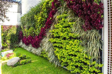 Image De Jardin by Jardines Verticales Www Imgkid The Image Kid Has It