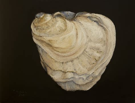 oyster shell shells on pinterest 887 photos on seashell painting