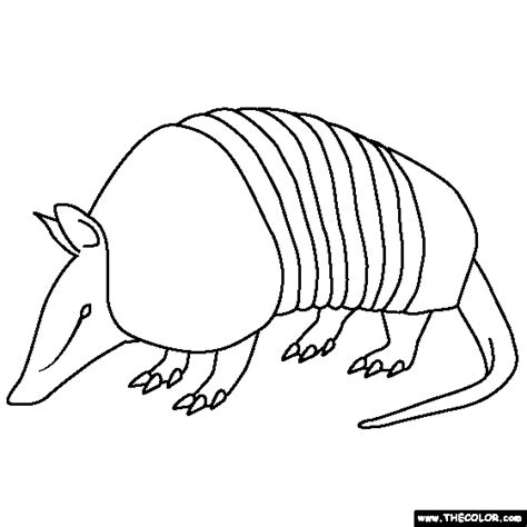 Jungle Animals Online Coloring Pages Page 1 Armadillo Coloring Page
