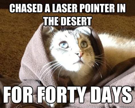 Laser Pointer Meme - best of the kitty jesus meme 14 pics pleated jeans