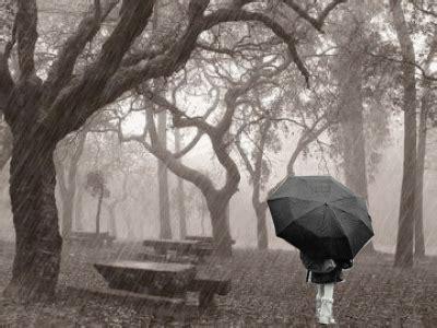 imagenes de otoño y lluvia luneta t 233 rmica