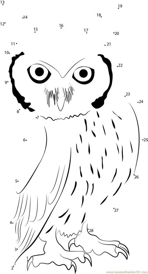 owl dot to dot printable ptilopsis granti dot to dot printable worksheet connect