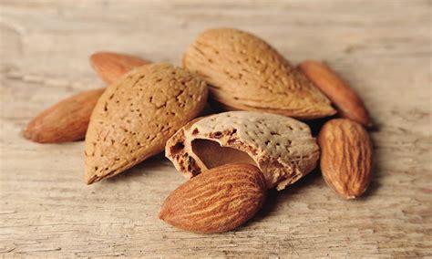 alimentazione e malattie alimentazione sana per prevenire malattie i consigli
