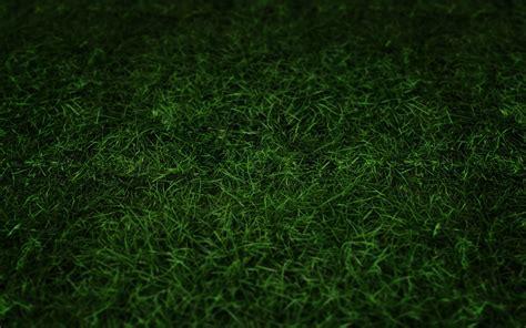 Paper From Grass - grass paper wallpaper 2017 grasscloth wallpaper