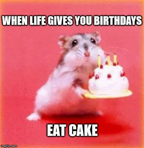 Cute Birthday Meme - cute happy birthday memes picture best birthday quotes