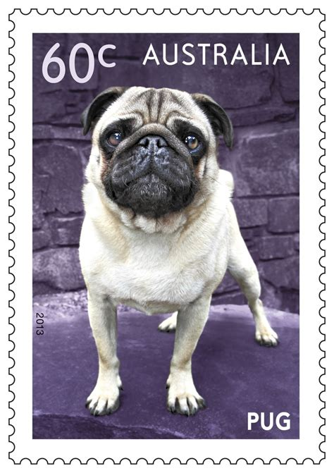 pugs australia pin by australia post on dear st collectors