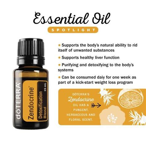 Detox Using Essential Oils by Spotlight On Zendocrine Essential Blend Detox