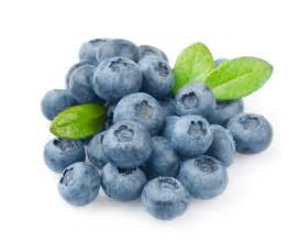 Tropical Plants Melbourne - blueberry fruit and vegetables melbourne