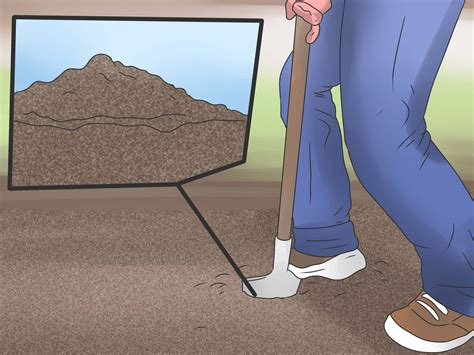 get rid of flies in house 12 ways to get rid of flies in the house wikihow