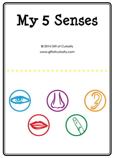 five books my five senses activities free five senses printables