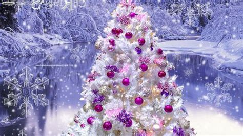 purple and white tree white tree pink purple ornaments we it