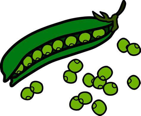 String Bean Clip - string beans clip clipart best