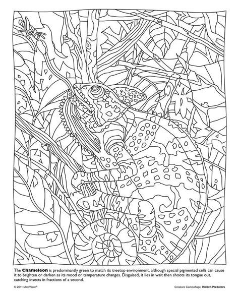 mindware coloring pages animals google search coloring