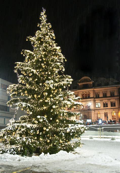 der weihnachtsbaum in ilanz foto bild spezial freude