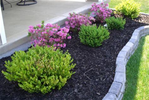 Shrub Garden Design Ideas Best Types Of Shrubs For Landscaping Designs Photos