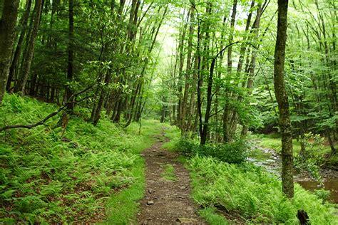 Hiking Trails In Hiking Season