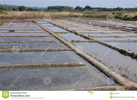 Why Does Salt L Leak Water by Salt Evaporation Pond Stock Image Image Of Water