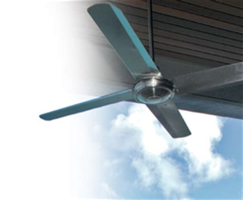 typhoon ceiling fans pacific typhoon ceiling fans