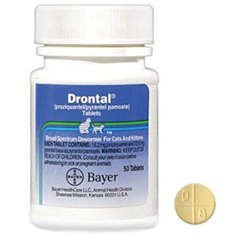 Bayer Drontal 1 Tablet drontal feline 50 tablets for cats wormer medication