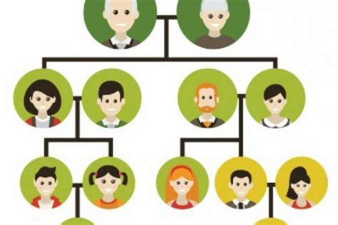 imagenes de la familia para arbol genealogico imagenes de la genealogia el nuevo arbol familiar