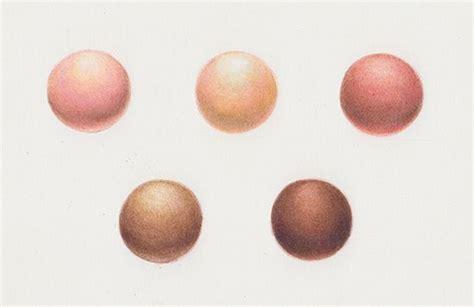 colored pencil skin tones creating skin tones with colored pencils colored pencils