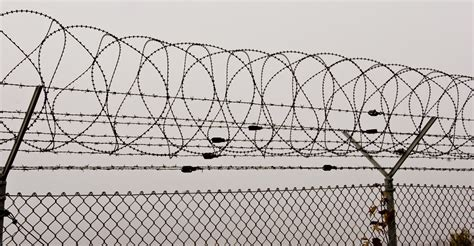barbed wire fence barbed wire fencetarah mendez multimedia authoring 7cczxbn0 astrid ovalles